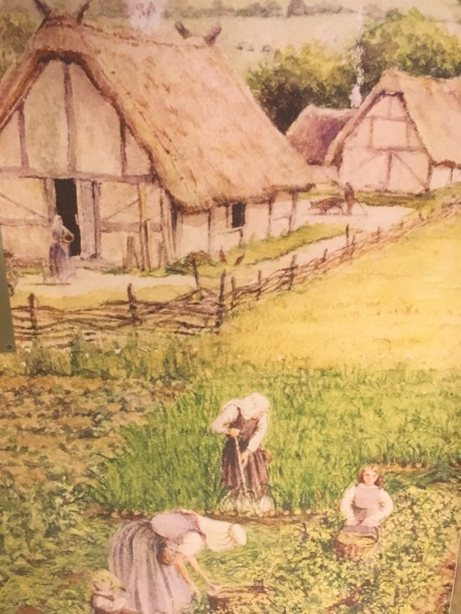 viking farm
